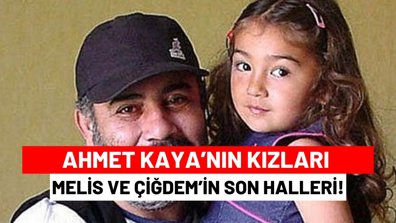 Beşiktaş Partizan Maçı hangi kanalda oynayacak? (5 Kasım 2014)