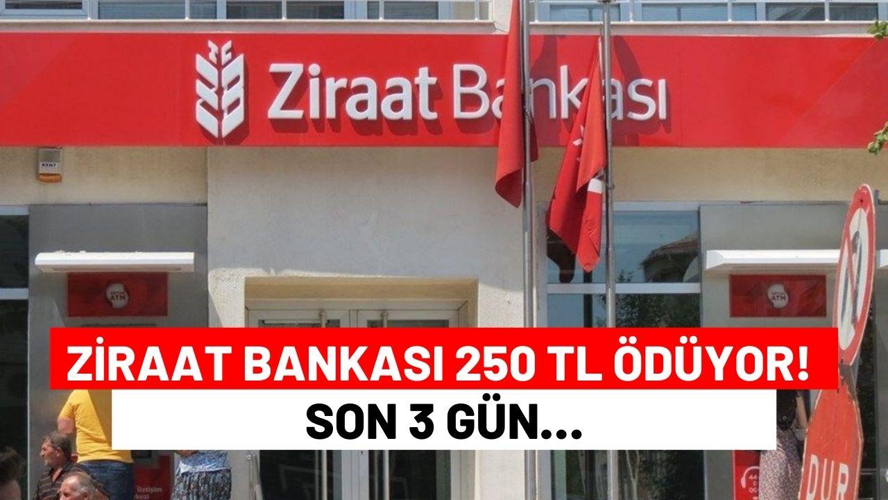 Gaziantep-Nizip Karayolunda Facia: 5 Ölü