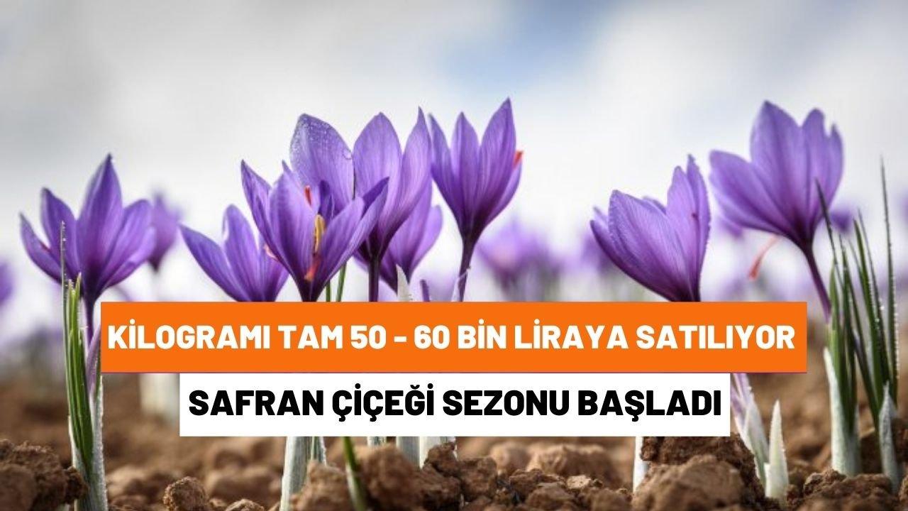 Yönetmen Mustafa Kemal Uzun Öldürüldü